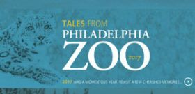 Philadelphia Zoo Holiday Animation